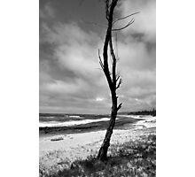 Barren Land Photographic Print