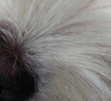 Emotional Support Dog(Landscape) Sticker