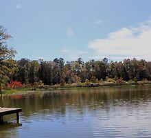 Alabama River in Fall by Kimberly  Saulsberry
