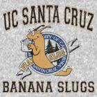 UC Santa Cruz Banana Slugs by youveseenthese