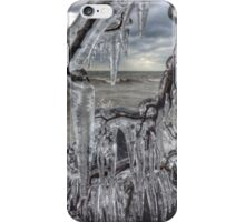 Point Pelee Icicles iPhone Case/Skin