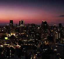 Panoramic city scenery of Tokyo and Tokyo tower art photo print by ArtNudePhotos