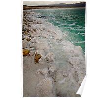 Dead Sea Shore Poster