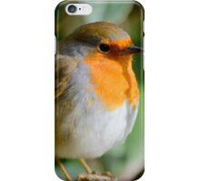 Cute Lil Chubby Robin iPhone Case/Skin