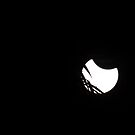 Eclipse, April 29, 2014  by Sandra Chung
