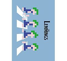 The Lemmings Photographic Print