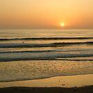Golden California Sunset - Pacific Beach, San Diego by Georgia Mizuleva