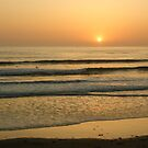 Golden California Sunset - Pacific Beach, San Diego by Georgia Mizuleva