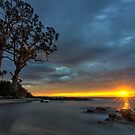 HDR - Two Tree Point, Adventure Bay, Bruny Island, Tasmania, Australia. by PC1134