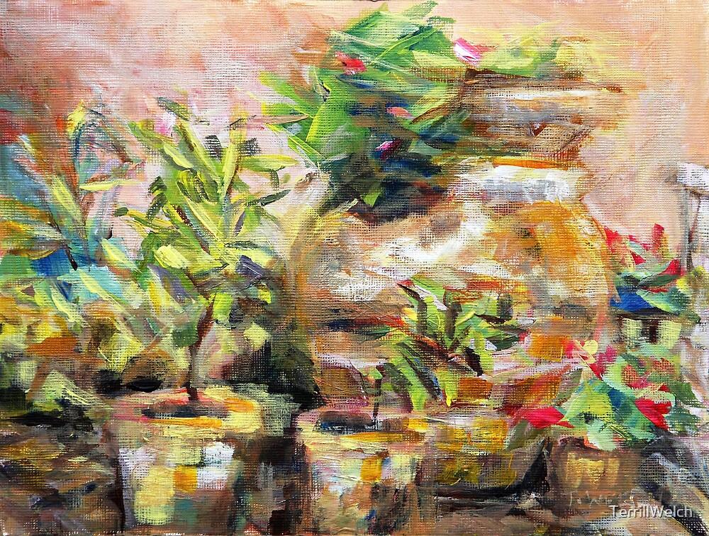 Garden Pots by TerrillWelch