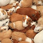 Guinea Pigs at the Market by rhamm
