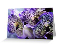 Aliens. Orchids from Keukenhof. Netherlands Greeting Card
