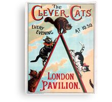 Clever Cats Metal Print