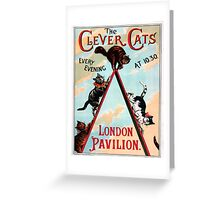 Clever Cats Greeting Card