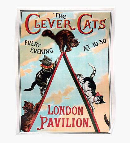 Clever Cats Poster