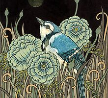 Blue Jay by Anita Inverarity