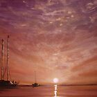 Purple Sunset at Sea... by Cherie Roe Dirksen