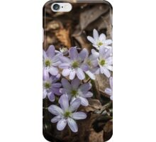 Round-lobed Liverleaf iPhone Case/Skin