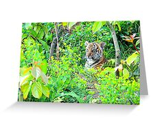 Tiger Cub in the Wood Greeting Card