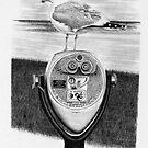 Chatham Seagull by J.D. Bowman