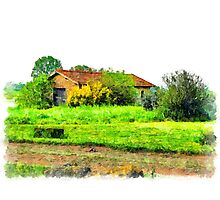 Rural building Photographic Print