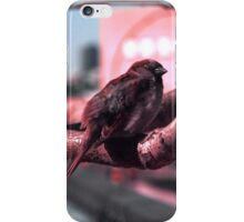 Sparrow on The High Line iPhone Case/Skin
