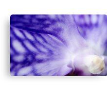Orchid Perception Canvas Print