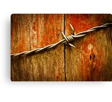 Barbed Wire on Wood Canvas Print