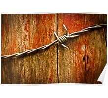 Barbed Wire on Wood Poster