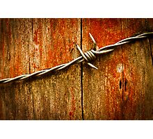 Barbed Wire on Wood Photographic Print