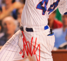 Anthony Rizzo signed photo Sticker