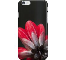 Red Dahlia iPhone Case/Skin