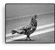 Partridge Crossing the Road Canvas Print