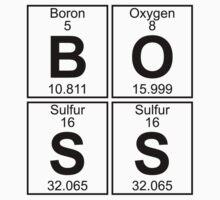 B-O-S-S (boss) by DOinc