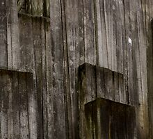 The Canyon - Freeway Park by Honario