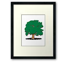 big shady tree Framed Print