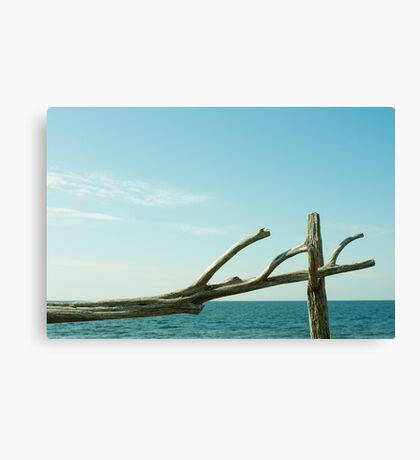 Gotland Canvas Print