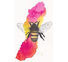 Watercolour Bee Photographic Print