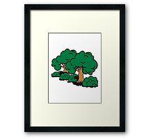 old big tree group Framed Print