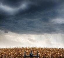 Facing the storm 2 by fatdogcreatives