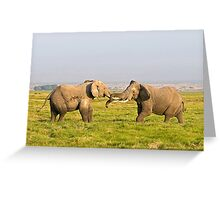 Elephant Fight Greeting Card