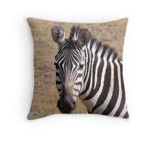 Zebra Close Up Throw Pillow
