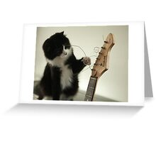 The musical cat! Greeting Card