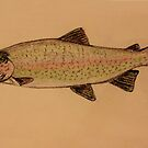 Fish Drawing by aprilann