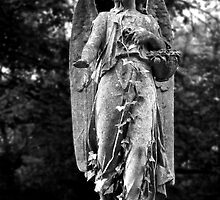 Angel Highgate Cemetery  by TessZeiner