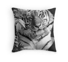 Tiger (1) Throw Pillow
