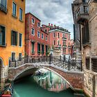 Venice Canal by Timothy Denehy