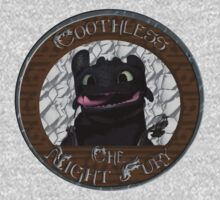 Toothless the Night Fury by entastictreeman