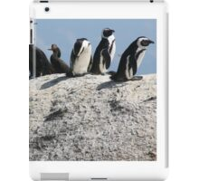 Penguins in South Africa iPad Case/Skin