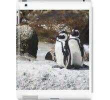 3 South African Penguins iPad Case/Skin